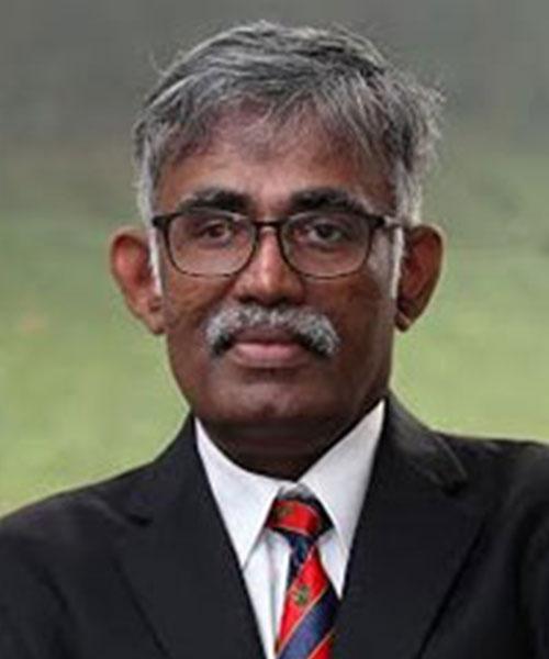 Professor Rajah Rasiah