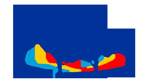Jean Monnet Network