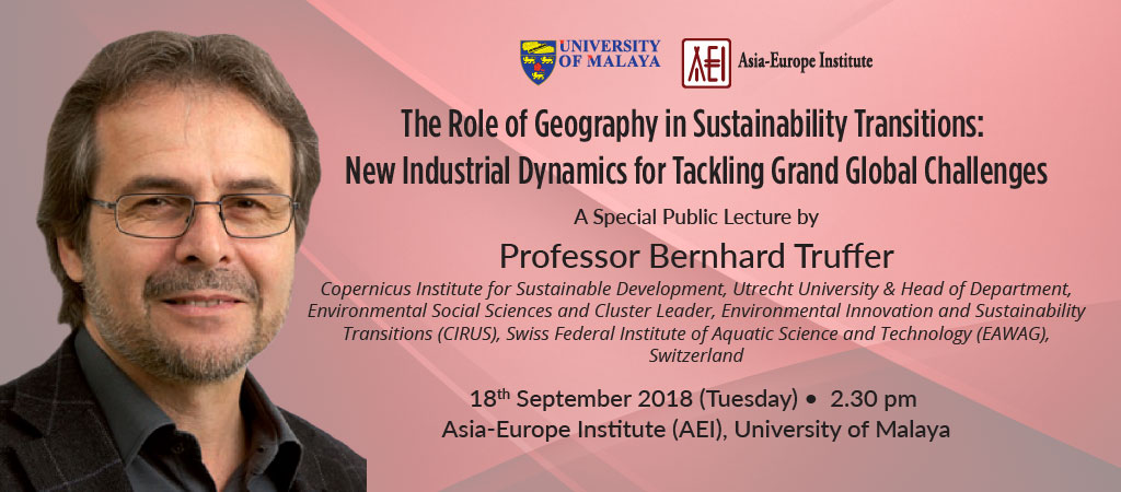 The Role of Geography in Sustainability Transitions: New Industrial Dynamic for Tackling Grand Global Challenges